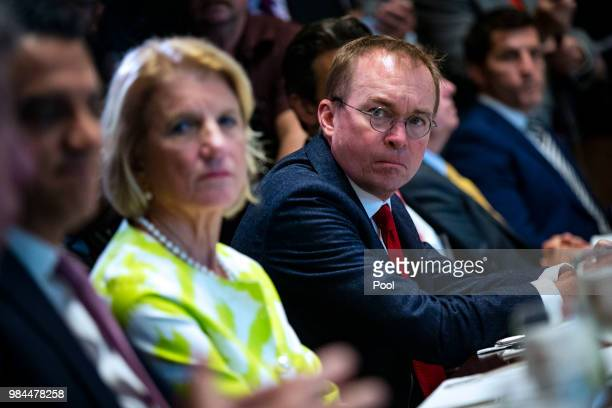 Mick Mulvaney director of the Office of Management and Budget attends a lunch meeting for Republican lawmakers in the Cabinet Room at the White House...