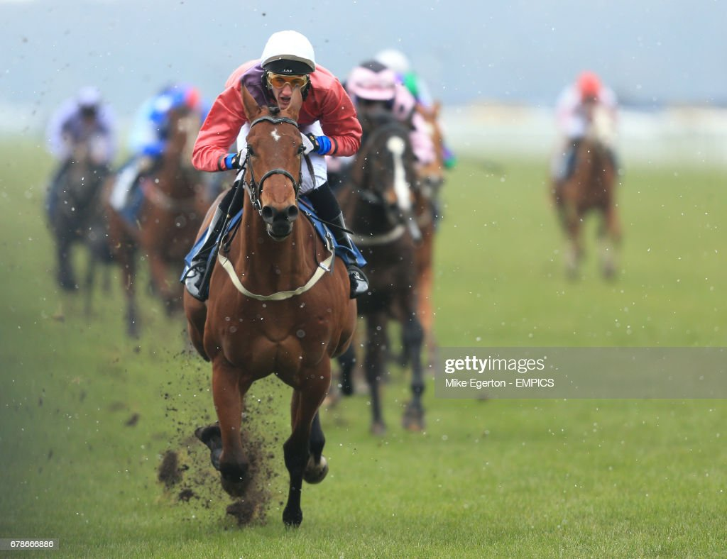 Horse Racing - William Hill Lincoln Meeting - Day One - Doncaster Racecourse : News Photo