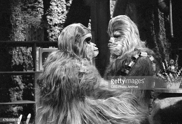 Mickey Morton and Peter Mayhew . Image dated August 23, 1978.