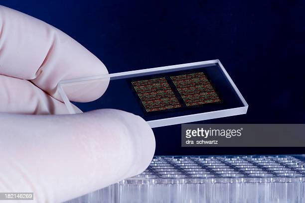 DNA microarray chips