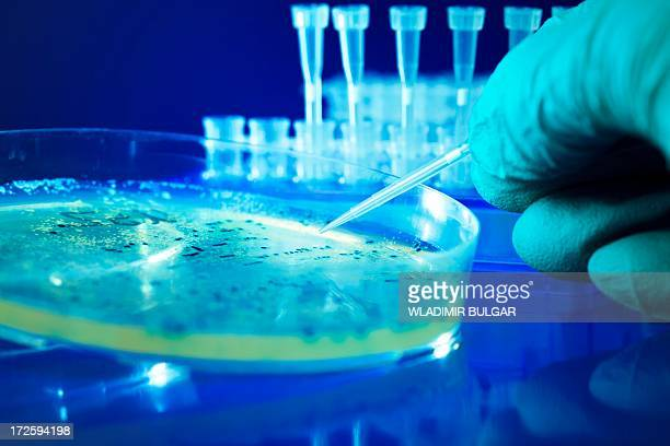 Microbiology research