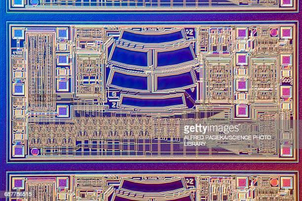 Microchip, light micrograph