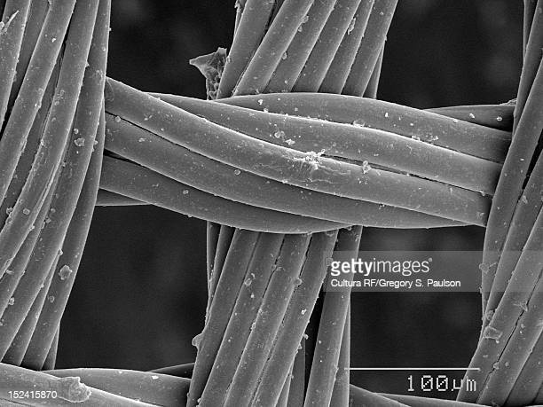 SEM Micrograph of a fine mesh screening