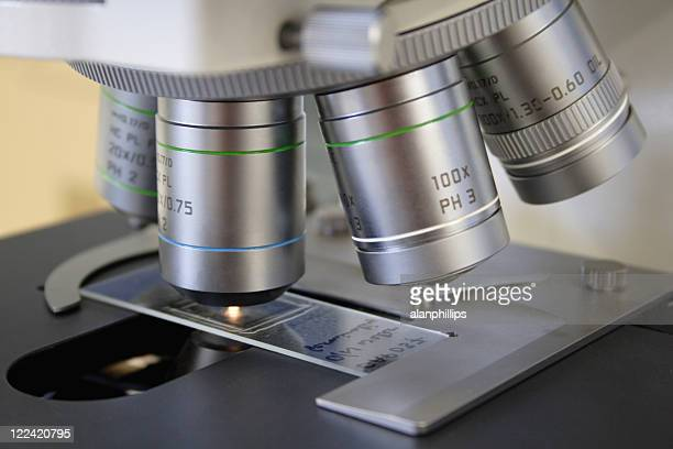 microscope objectives and slide - histology stock photos and pictures