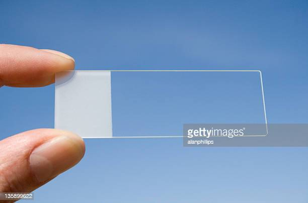 microscope slide with a blue sky background - histology stock pictures, royalty-free photos & images