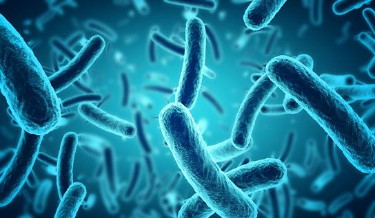 microscopic blue bacteria background 628978952
