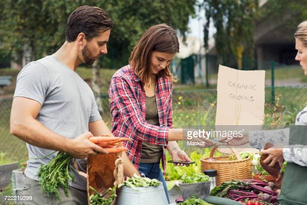 mid adult couple selling garden vegetable to female customer - harvest table stock pictures, royalty-free photos & images