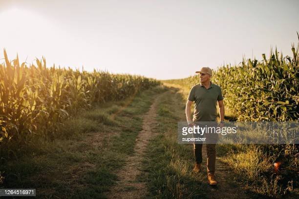 mid adult farmer inspects his land - may stock pictures, royalty-free photos & images