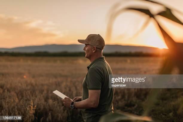el agricultor adulto medio inspecciona su tierra - agricultura fotografías e imágenes de stock