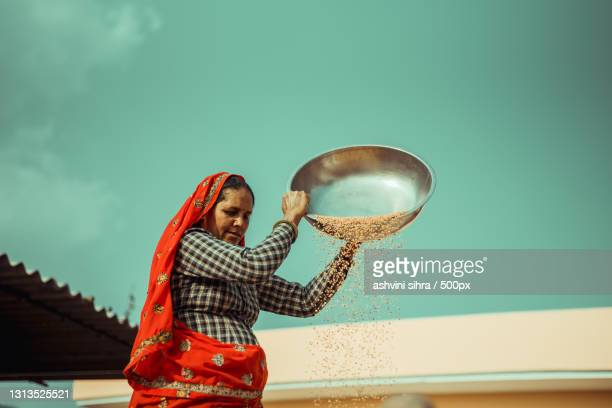 mid adult indian woman doing daily chores in red saree outdoors,india - images stock pictures, royalty-free photos & images