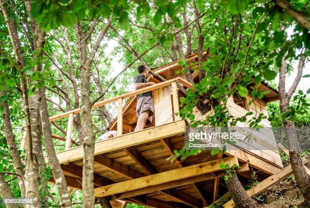 mid adult man building wooden tree house - tree house stock pictures, royalty-free photos & images