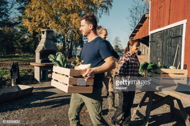 mid adult man carrying crate full of vegetables at farmers market - community support stock pictures, royalty-free photos & images