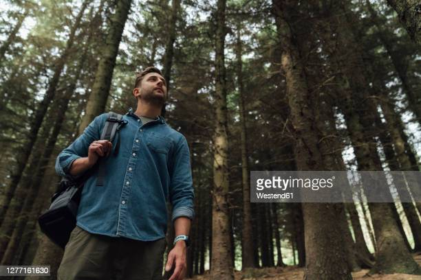 mid adult man contemplating while standing against trees in forest - woodland stock pictures, royalty-free photos & images
