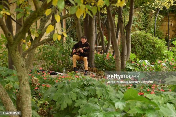 mid adult man playing guitar while sitting on chair amidst trees in park - montero flor fotografías e imágenes de stock