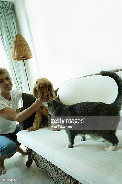 Mid adult man playing with a dog and a cat