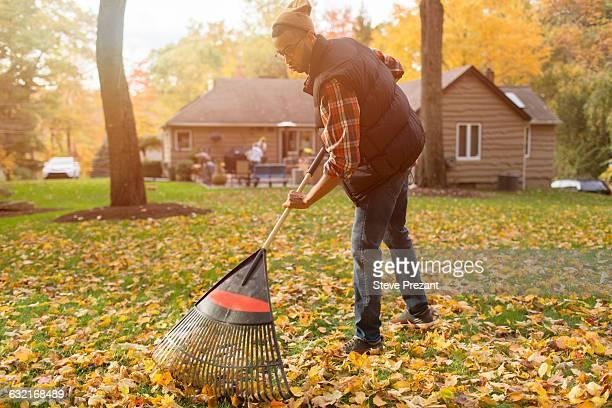 mid adult man raking in autumn leaves garden - rake stock pictures, royalty-free photos & images