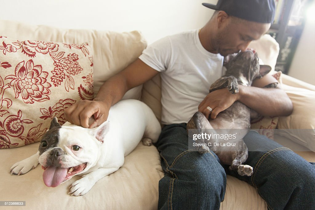 Mid adult man sitting with two french bulldogs : Foto de stock