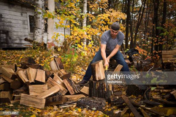 mid adult man splitting logs in autumn forest, upstate new york, usa - heshphoto stock pictures, royalty-free photos & images
