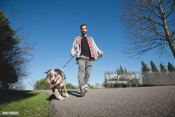 Mid adult man walking dog in park, low angle view