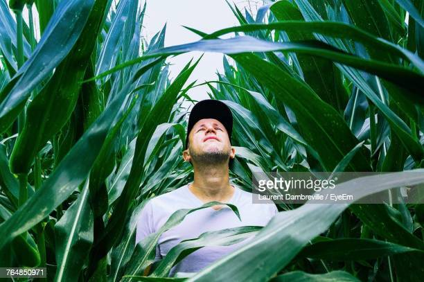Mid Adult Man Wearing Cap Standing Amidst Plants At Farm Against Sky