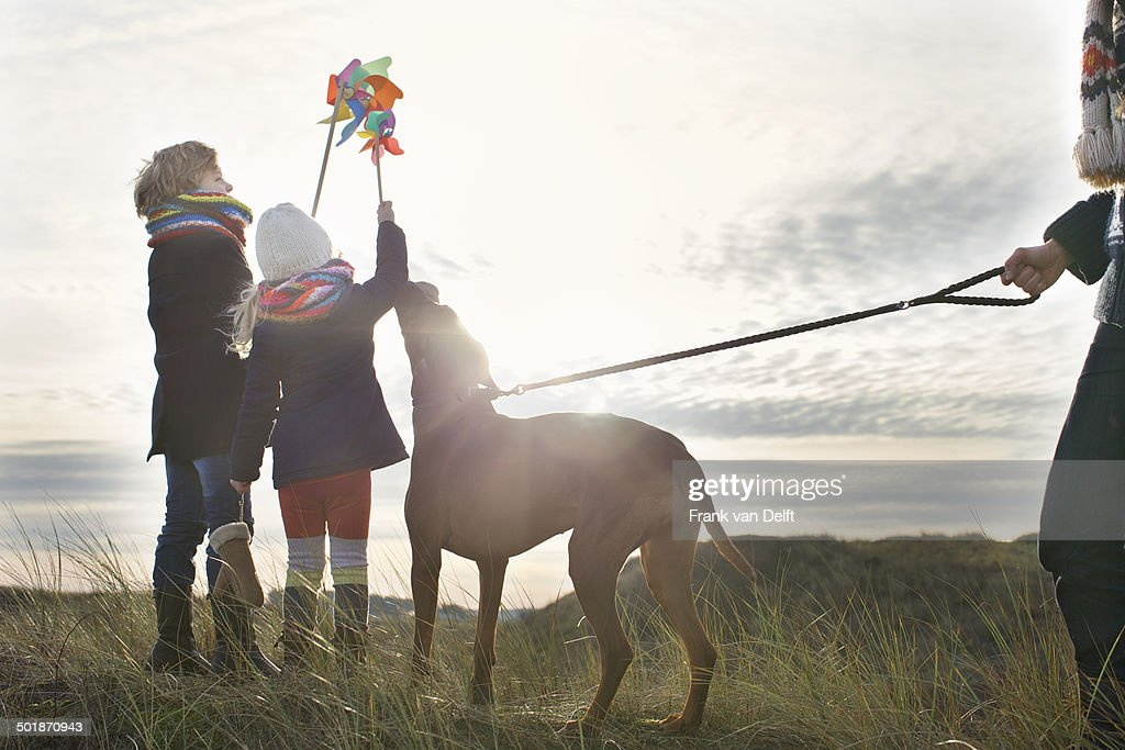 Mid adult man with son, daughter and dog at coast : Stock Photo