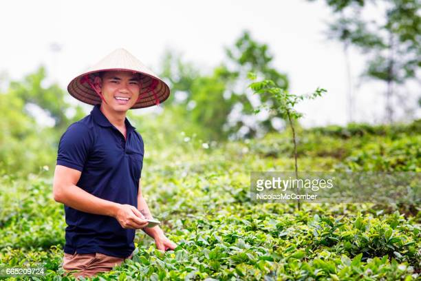 mid adult vietnamese man portrait in tea plantation with conical hat - vietnamese culture stock pictures, royalty-free photos & images