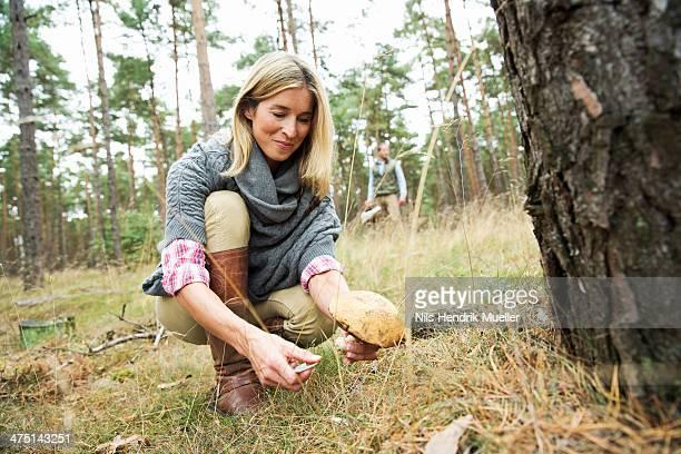 mid adult woman foraging for mushrooms - foerageren stockfoto's en -beelden