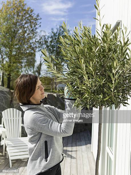 Mid adult woman gardening