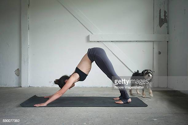 Mid adult woman practicing downward facing dog pose in yoga studio, Munich, Bavaria, Germany