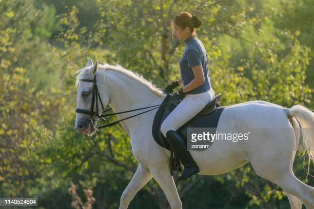 mid adult woman riding horse for exercise - rein stock pictures, royalty-free photos & images