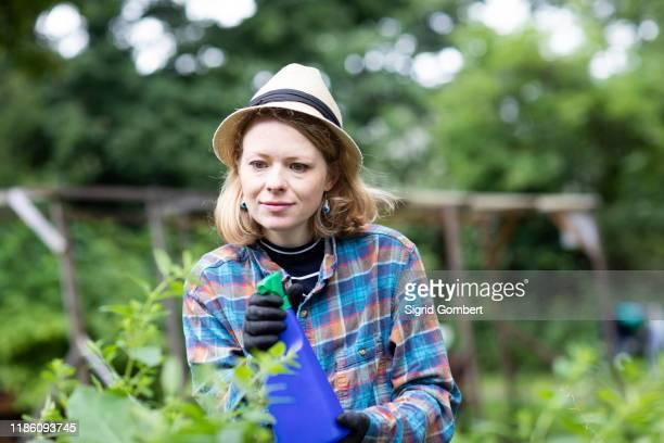 mid adult woman spraying plants in her garden, selective focus - sigrid gombert stock-fotos und bilder