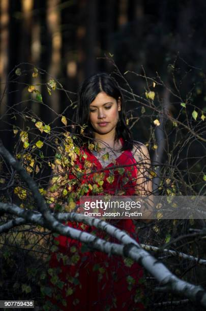 Mid Adult Woman Standing By Branches In Forest