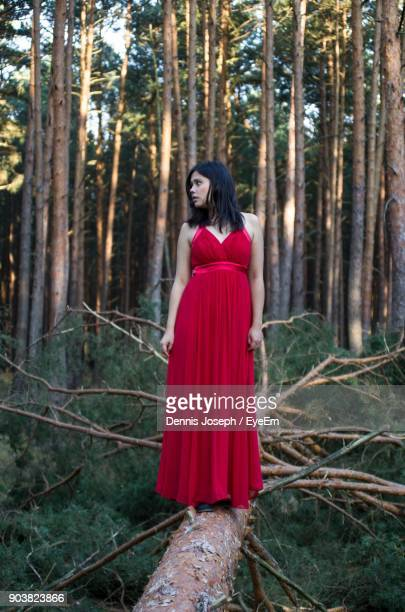 Mid Adult Woman Standing On Fallen Tree In Forest