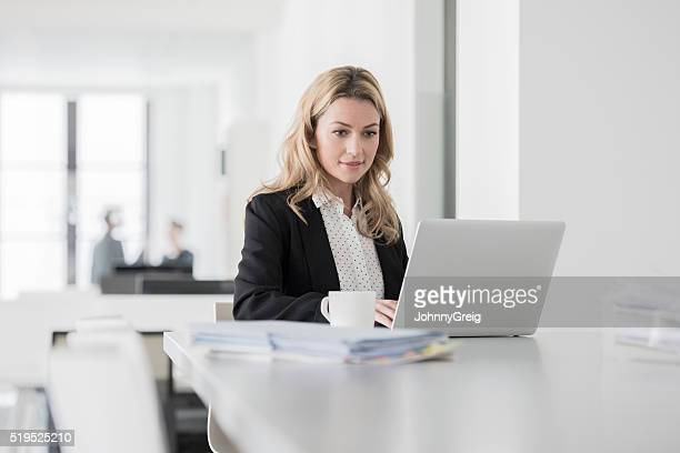 mid adult woman using laptop and concentrating in office - concentration stock pictures, royalty-free photos & images