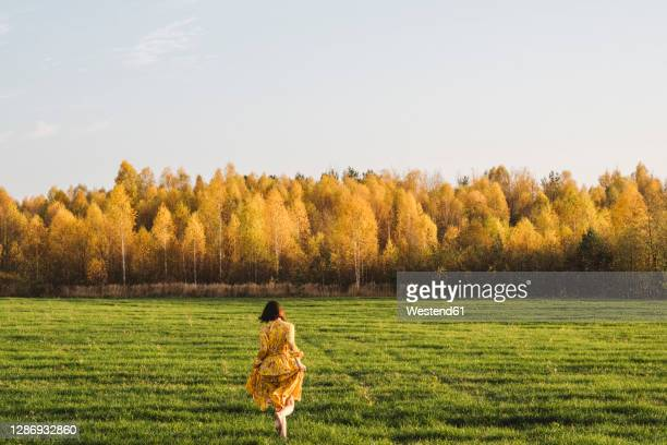 mid adult woman walking on grass in autumn field on sunny day - yellow dress stock pictures, royalty-free photos & images