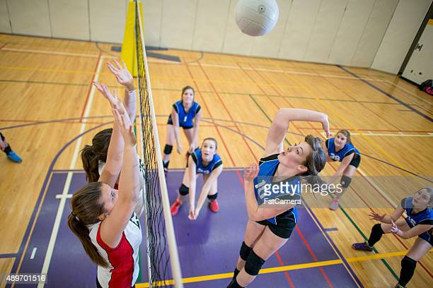 mid air volleyball action shot - high school volleyball stock photos and pictures