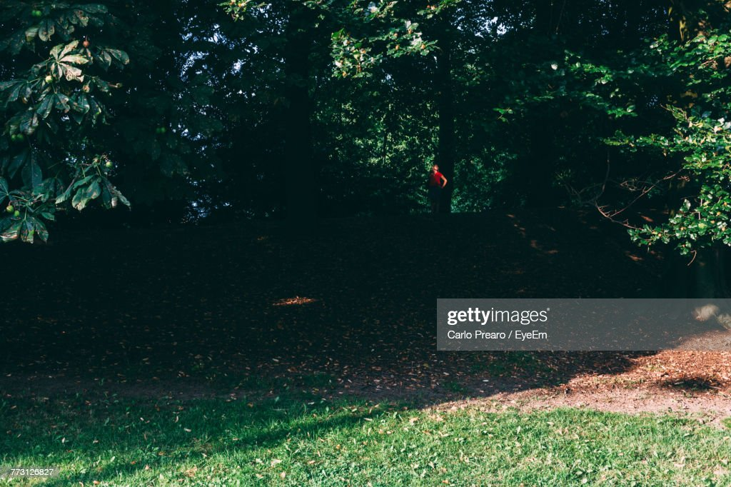 Mid Distance Of Person Standing Against Trees At Park : Photo