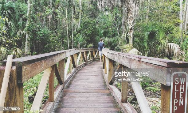 mid distance view of man carrying child while walking on boardwalk in forest - sebring stock photos and pictures