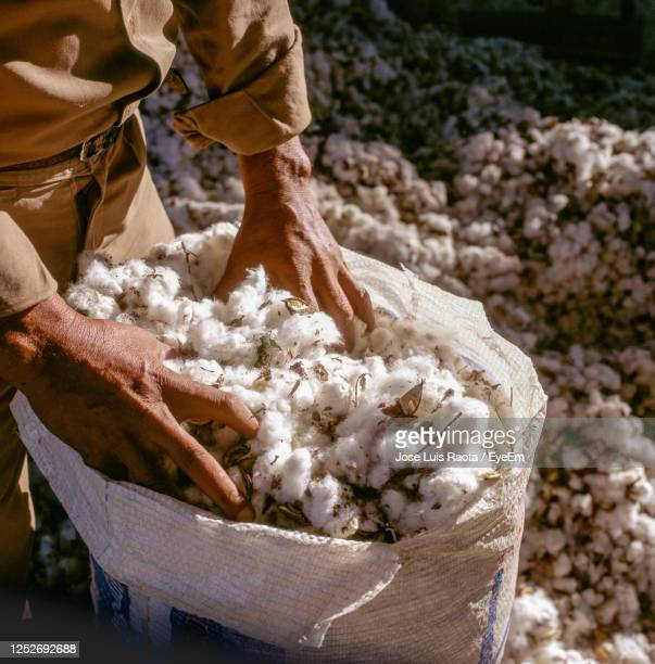 mid section of man working in cotton industry - cotton harvest stock pictures, royalty-free photos & images