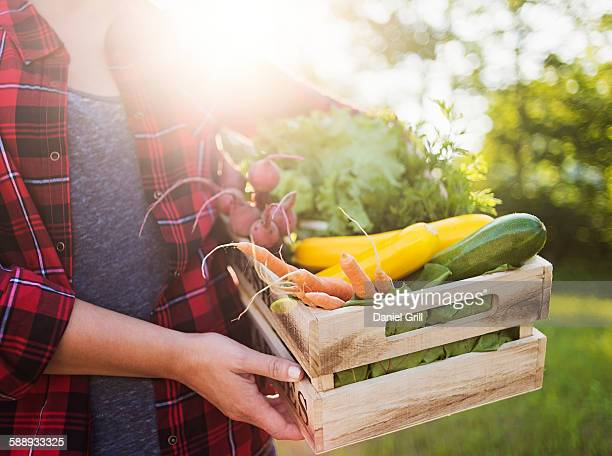 Mid section of woman holding crate with vegetables