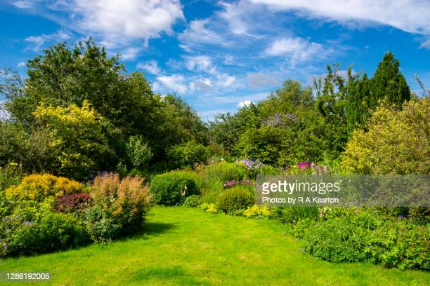 mid summer in an english country garden - weather stock pictures, royalty-free photos & images