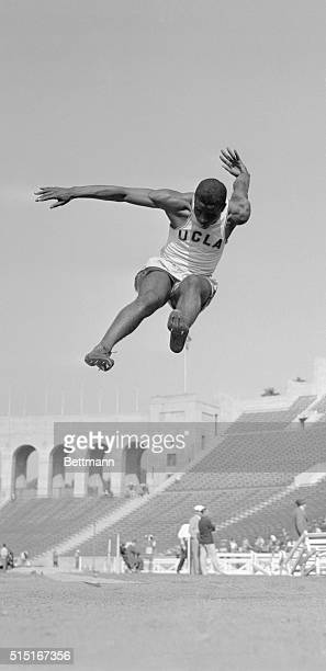 Midair action shot of UCLA student Jackie Robinson winning an event at a track meet at the Los Angeles Coliseum