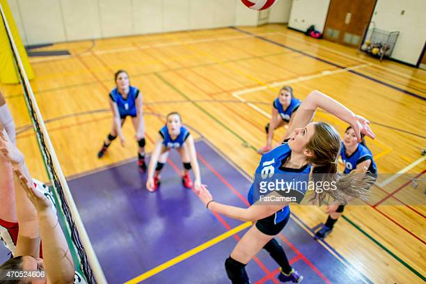 Mid-air Volleyball Spike