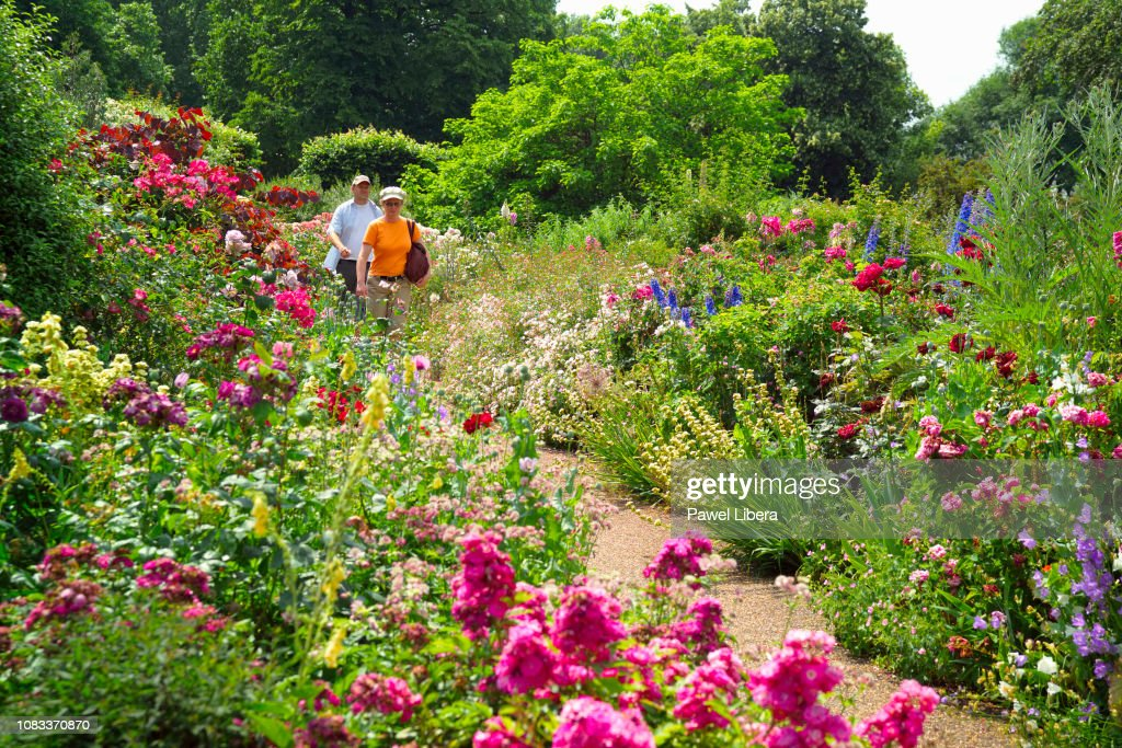 A middle age couple walking amongst summer flowers in London... : News Photo