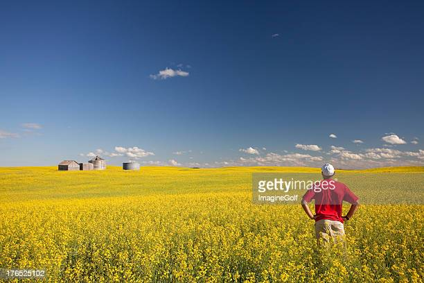 Middle Aged Caucasian Farmer Standing in Yellow Canola Field