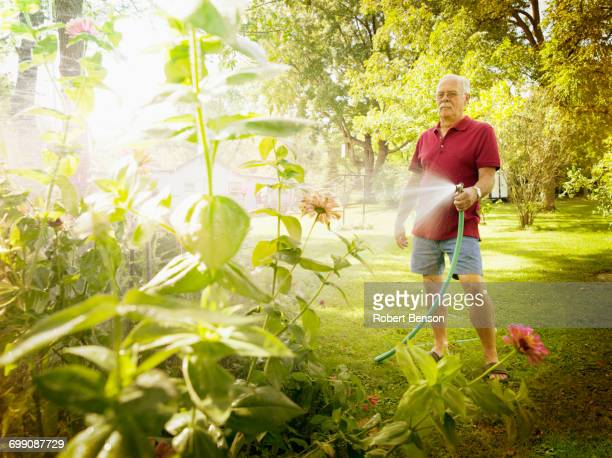 A middle aged man sprinkles water on plants in his garden.