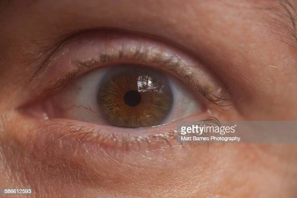 Middle aged woman's eye