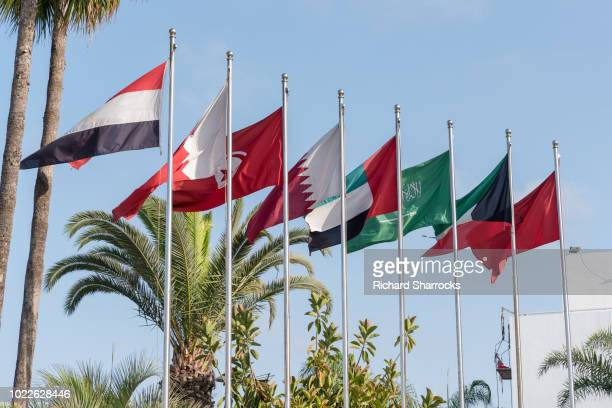 mena middle east and north africa flags - gulf countries stock pictures, royalty-free photos & images