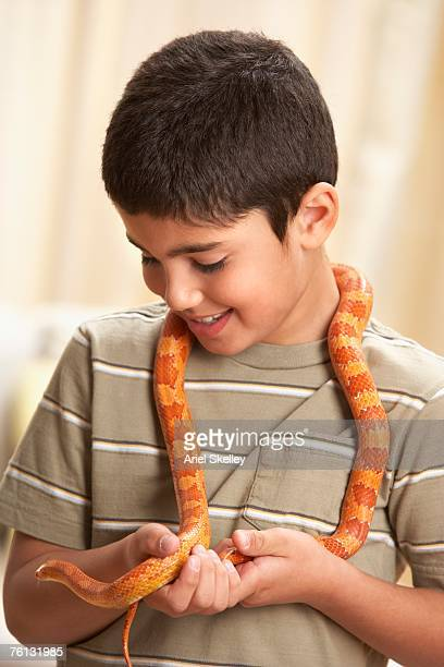 Middle Eastern boy holding milk snake