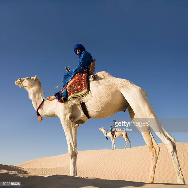 middle eastern men on a camel - hugh sitton stock-fotos und bilder